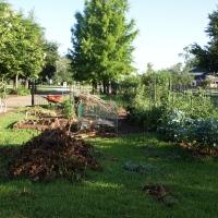 Your Wait is Over!  Detailed Garden Update