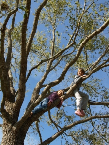 Love is...Climbing Trees!