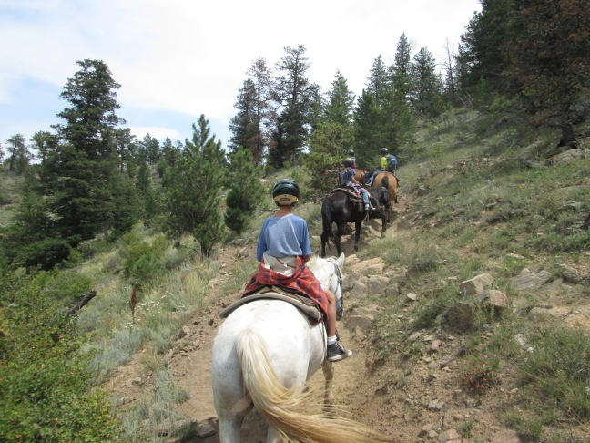 An Easy Uphill Hike - Horseback riding in Estes Park, CO