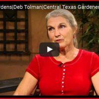 Dr. Deb Interview - Keyhole Garden