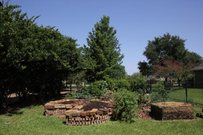 Summer_Garden