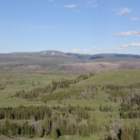 Yellowstone: Day 2
