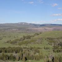 Yellowstone: Day 2