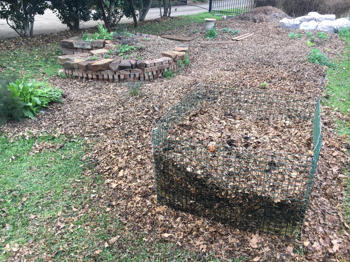 Blank Slate, Spring Garden Update