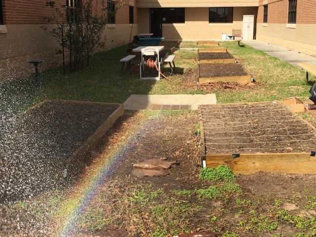garden_rainbow