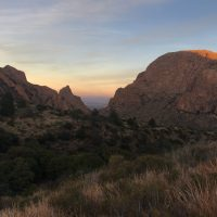Big Bend Birding: Off The Grid